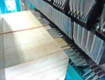 Finger jointing line also for Turkey
