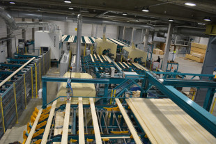 Solid constructional timber line